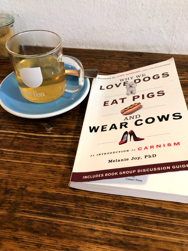 "Buch von Dr. Melanie Joy: ""Why we love Dogs, eat Pigs and wear Cows - an Introduction to Carnism"""